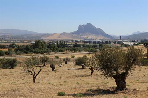Индивидуальная экскурсия в Севилью и Антекеру из Малаги