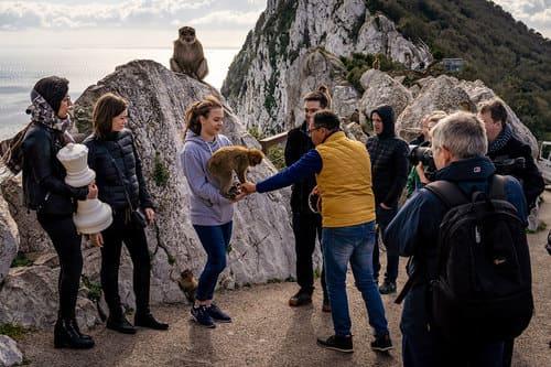 Индивидуальная экскурсия в Гибралтар из Торремолиноса